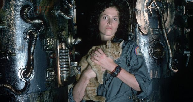 Ripley and her cat