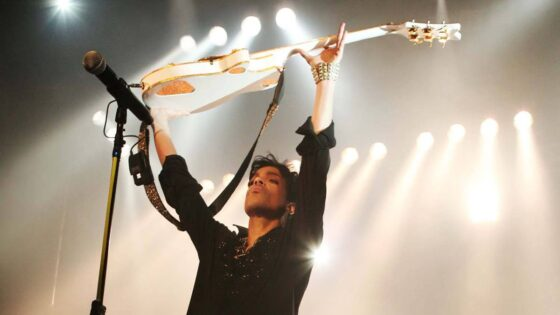 Prince Montreal Concerts
